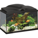 San Dimas acuario aqua light color negro de 20l.